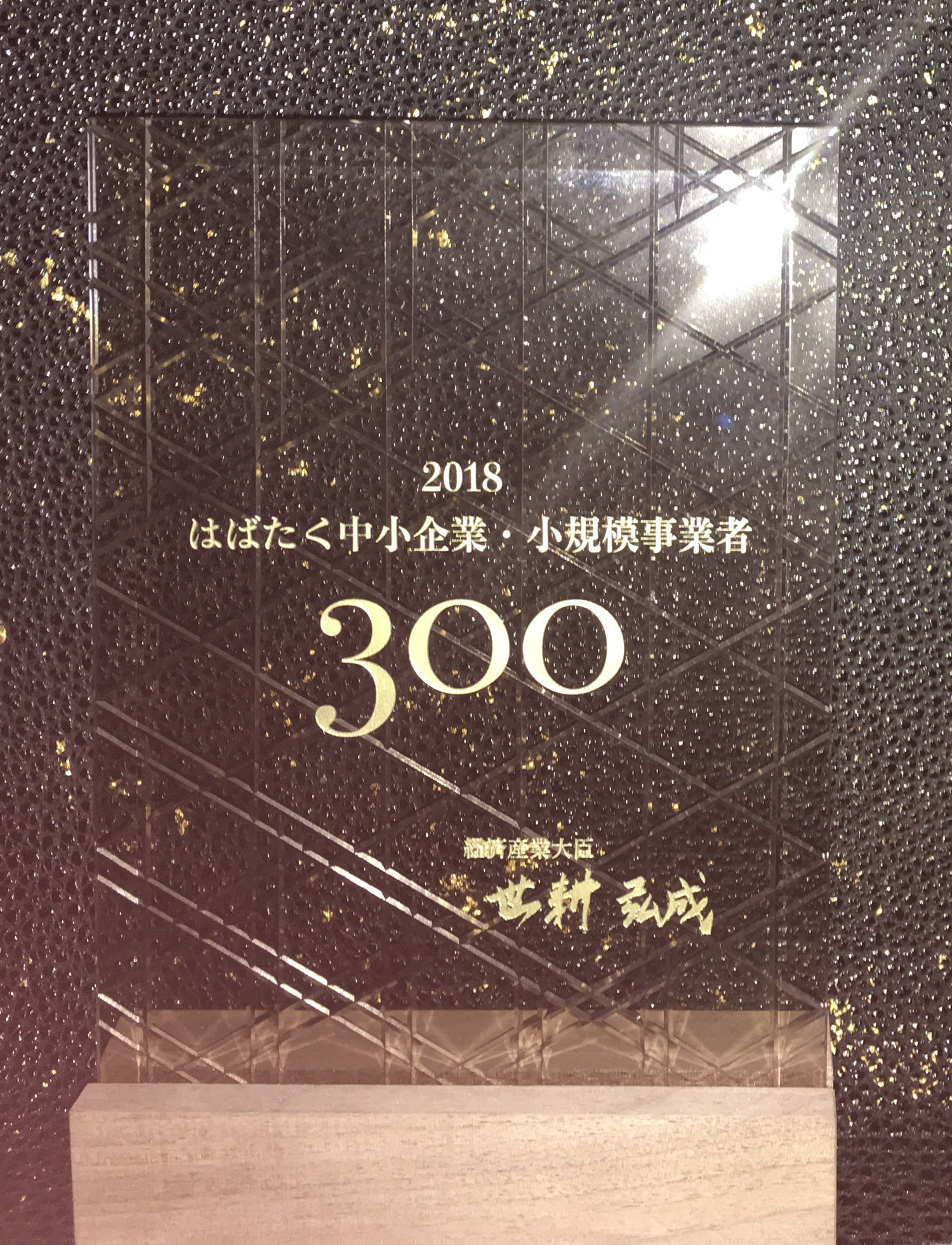 Flapping SME・300 small businesses Flappingly 30 shopping streets
